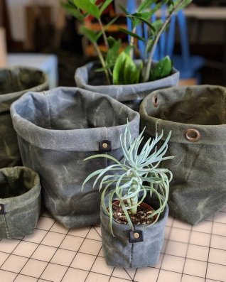 Succulent planter in waxed canvas