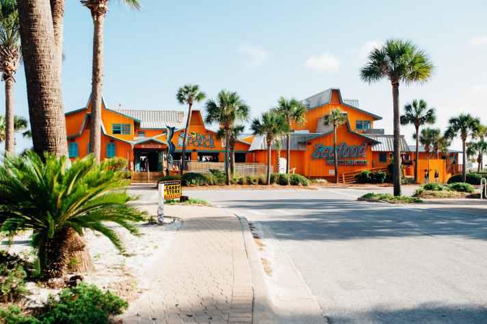 landscape photography of orange market